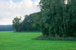 Linie van den Hout - Etappe 8 - ZWL