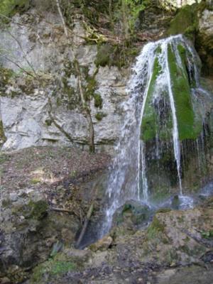 Tannegger Wasserfall