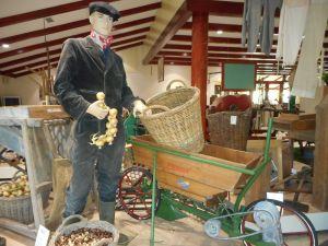 Museum Historisch Harenkarspel
