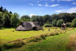 Goudberg Celtic Fields