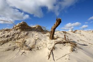 Zandverstuiving Baaknol