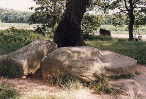 Hunebed D22-Bronneger