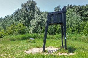 boswachterspad-walcheren-veerse-bos-hoge-stoel