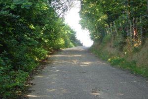 Beklimming Boschweg