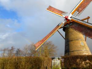 De molen van Oostvoorne