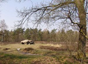 Hunebed D40-Valtherbos Emmen