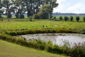 Wielen bij Waalwijk - Etappe 10 - ZWL