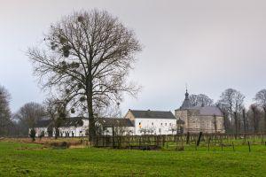 Kasteel Genhoes-Oud Valkenburg
