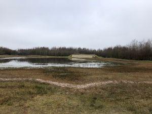 Oeverzwaluwwand op landgoed 'het Noasman'