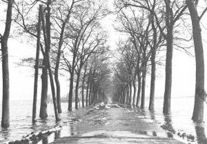 Kruising Nekkerweg-Zuiderweg