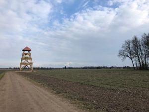 Uitkijktoren Needse Berg