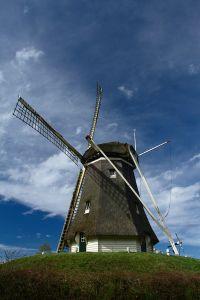 Windmill 'De Duif'