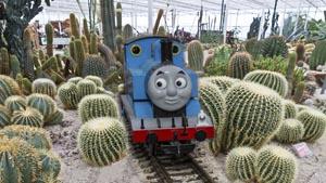 Overdekt Belevingspark CactusOase