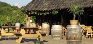Wijngaard Hesselink