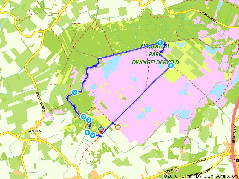 Wandelen over de heide van het Nationaal Park Dwingelderveld
