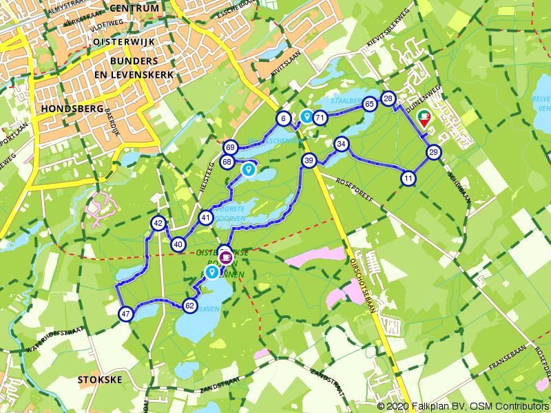 Wandelen door de prachtige Oisterwijkse Bossen