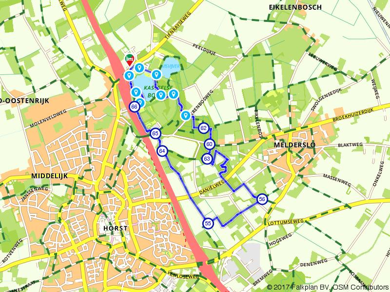 Wandelen bij de Kasteelse Bossen nabij Horst