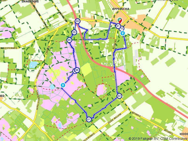 Wandelen door het Drents-Friese Wold