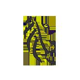 logo: Hi-Tec
